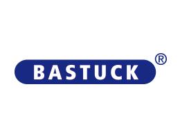 logo web bastuck